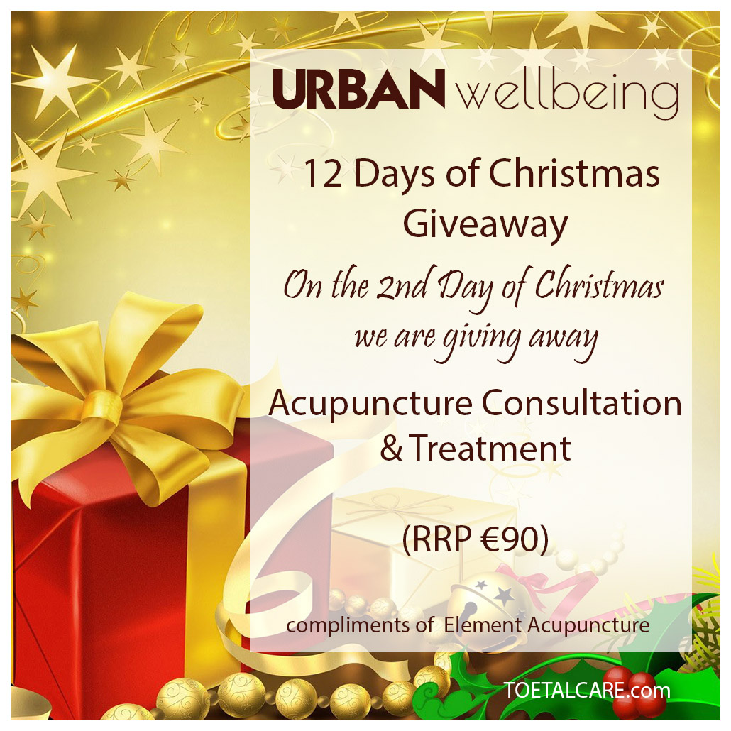 12 days of christmas giveaway on the 2nd day of christmas we are giving away an acupuncture consultation treatment compliments of element acupuncture - 12 Day Of Christmas